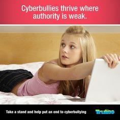 cyberbulliesnosupervision