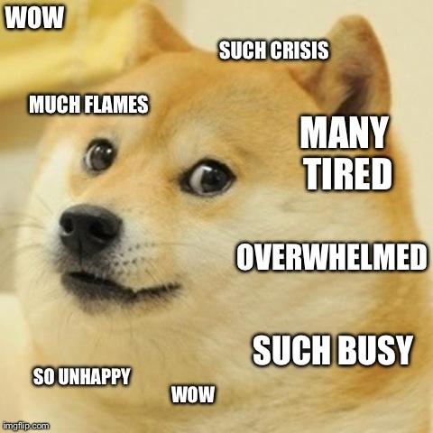 stressdog